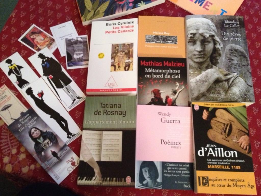 Salon du livre 2013 dans À la une image15-1024x768
